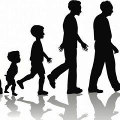 По кој редослед старее човечкиот организам