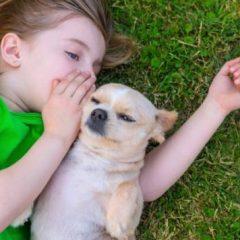 Дали вашето дете треба да расте со милениче