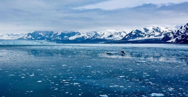 Минатата година океаните и морињата беа најтопли откако се врши мерење