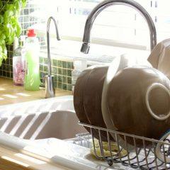Колку се опасни детергентите од недоволно исплакнати садови