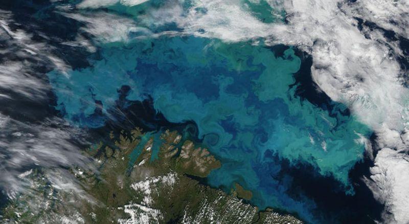Климатските промени ќе влијаат на бојата на океаните