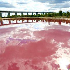 Розово езеро - природен феномен во Австралија