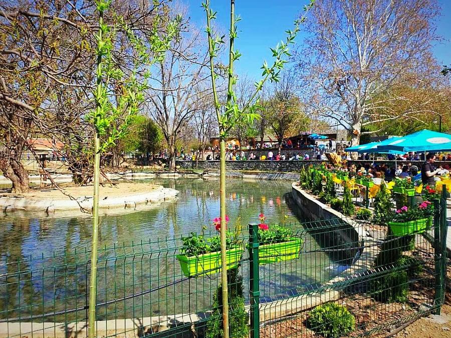 Скопската Зоолошка градина доби пролетно освежување и разубавување