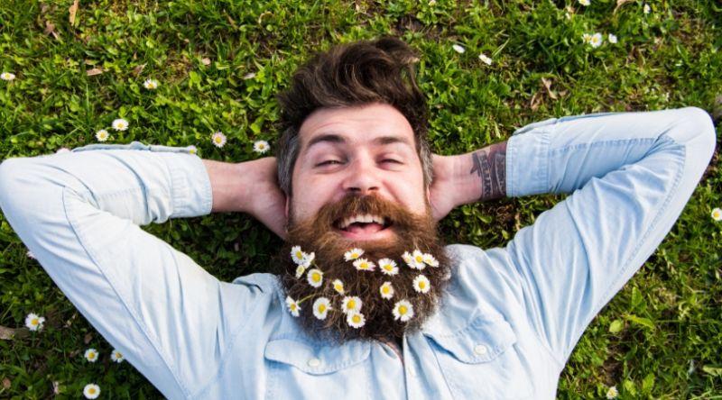 Машката брада има повеќе патогени бактерии отколку кучешкото крзно