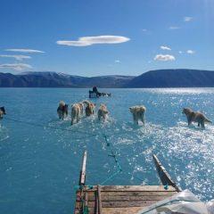 Климатските промени си го прават своето - таму каде што беше мраз, сега е вода