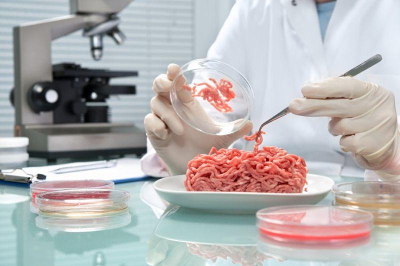 Бургери од лабораториско месо – дали е вистински здраво и ќе ја штити ли околината?